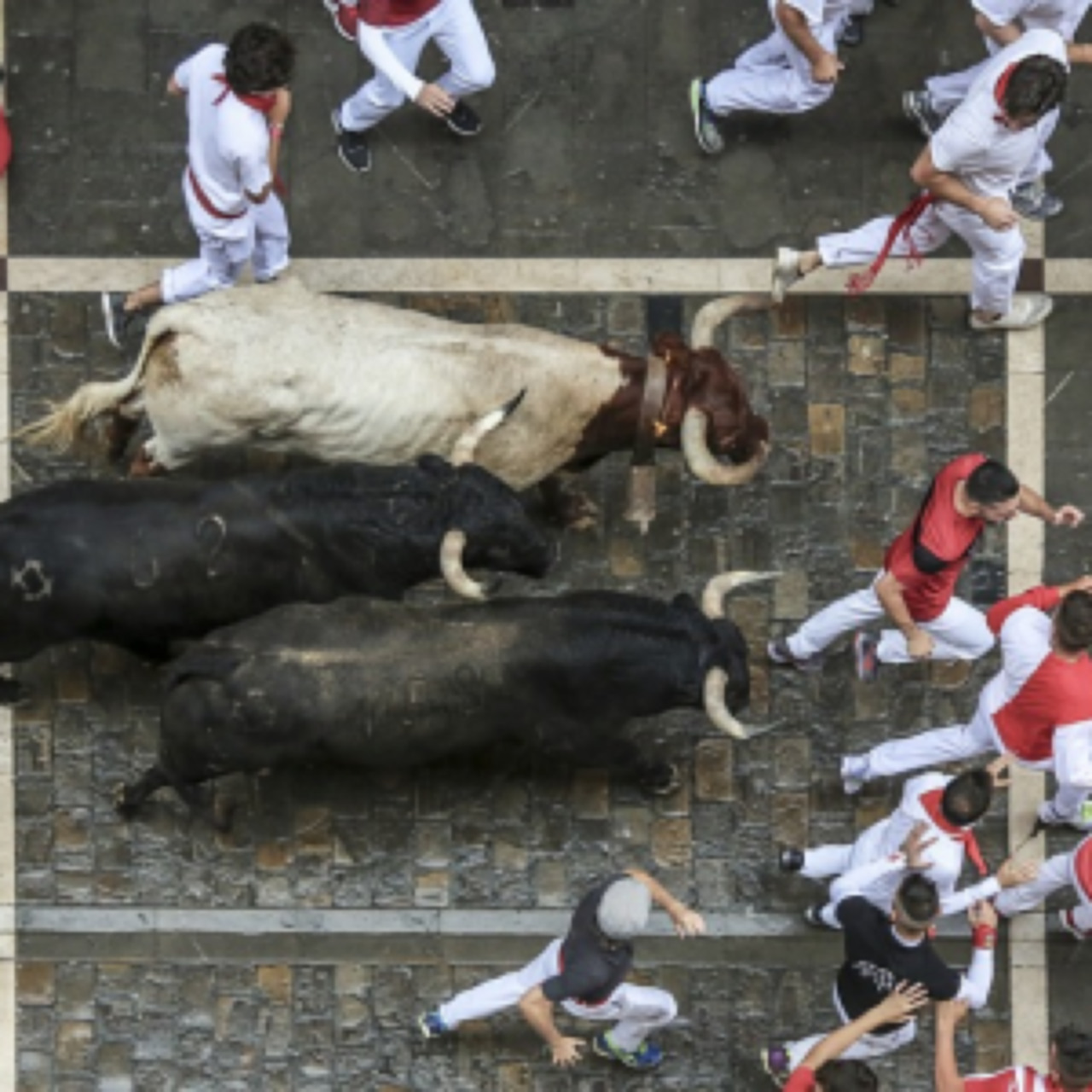 What to do in Pamplona